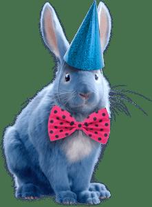 Uncle Bucks Magic Show Bunny